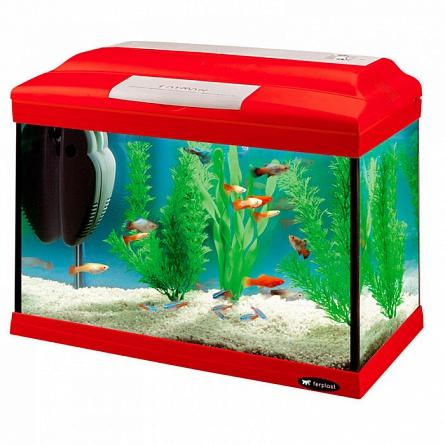 Простой аквариум для начинающих